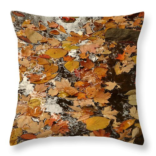 Nature Throw Pillow featuring the photograph On The Water by Michael McGowan