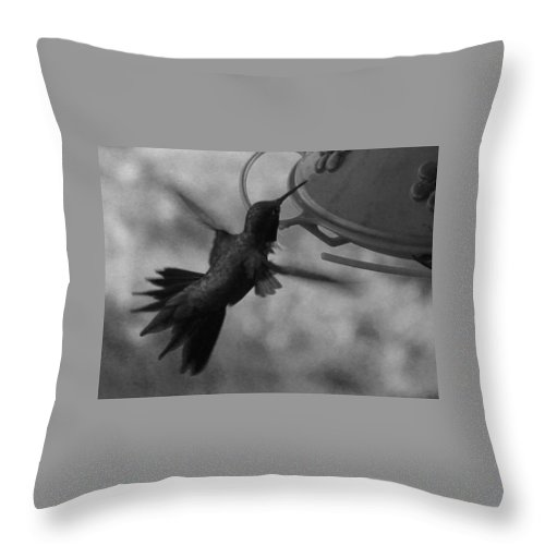 Hummingbird Throw Pillow featuring the photograph On The Wings Of A Hummingbird by Samantha Burrow