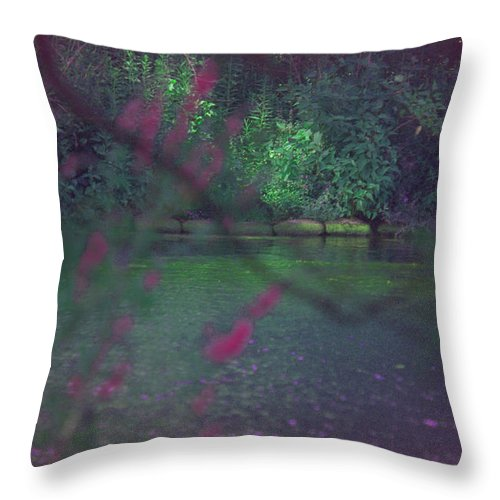 Throw Pillow featuring the photograph Once Upon A Summer by The Art Of Marilyn Ridoutt-Greene