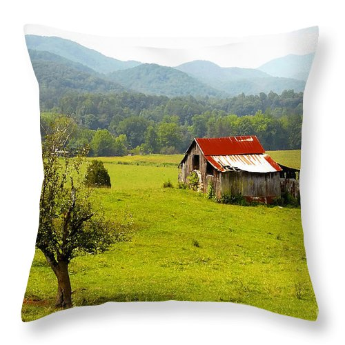 Farm Throw Pillow featuring the photograph Once Upon A Time by David Lee Thompson