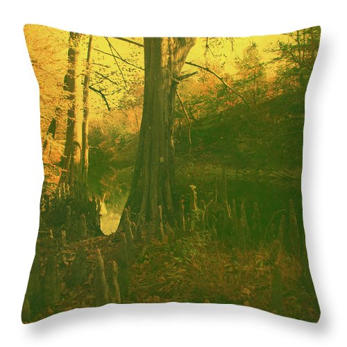 Gold Throw Pillow featuring the photograph Once Upon A Time by Nina Fosdick