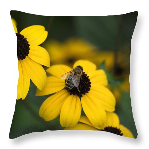Yellow Throw Pillow featuring the photograph One Bee Over The Flower's Nest by Adrian Bud