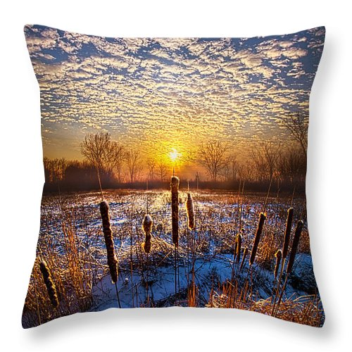 Cattails Throw Pillow featuring the photograph One Day At A Time by Phil Koch