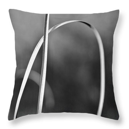 Grass Throw Pillow featuring the photograph One Note by Lara Morrison