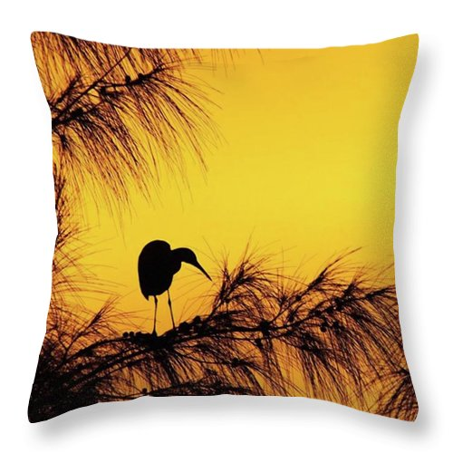 Egret Throw Pillow featuring the photograph One Of A Series Taken At Mahoe Bay by John Edwards