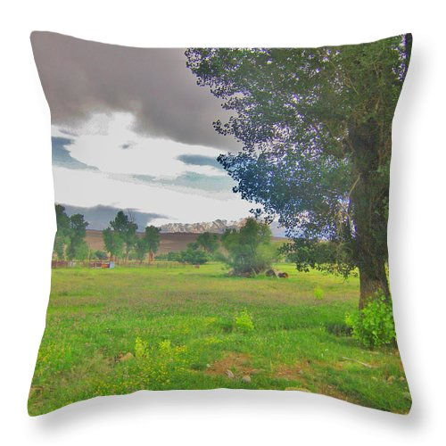 Sky Throw Pillow featuring the photograph One Stormy Evening by Marilyn Diaz