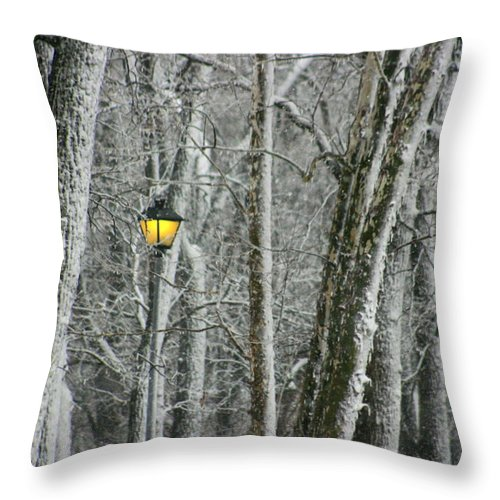 Landscape Throw Pillow featuring the photograph One Strange Tree 1 by David Dunham