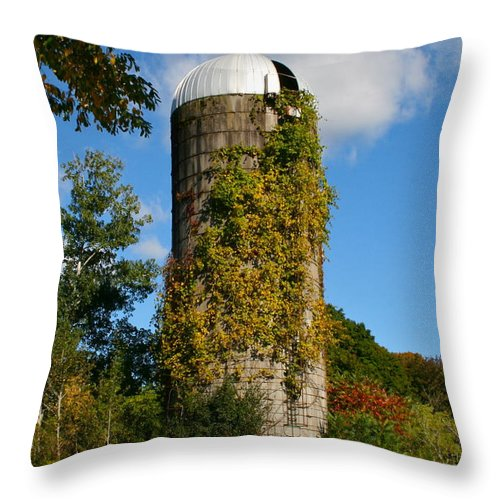 Silo Throw Pillow featuring the photograph One With Nature by Rick Monyahan