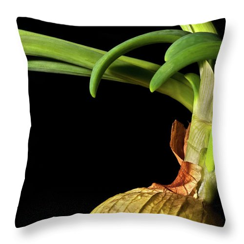 Onion Greens Throw Pillow featuring the photograph Onion Sprouting by Onyonet Photo Studios