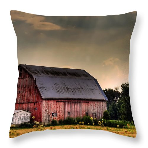 Barn Throw Pillow featuring the photograph Ontario Barn In The Sun by Tim Wilson