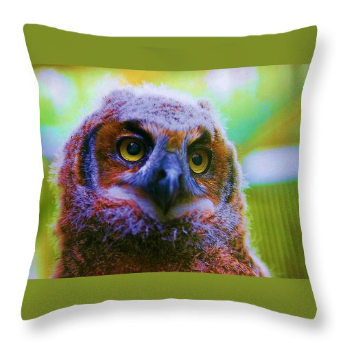Owl Throw Pillow featuring the photograph Opalescent Owl by Nelson Strong