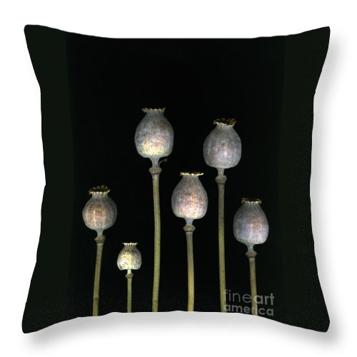 Scanography Throw Pillow featuring the photograph Opiates by Christian Slanec