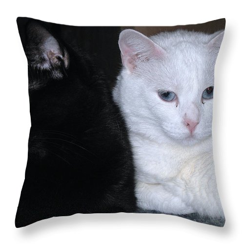 Animal Throw Pillow featuring the photograph Opposites by Kenneth Albin