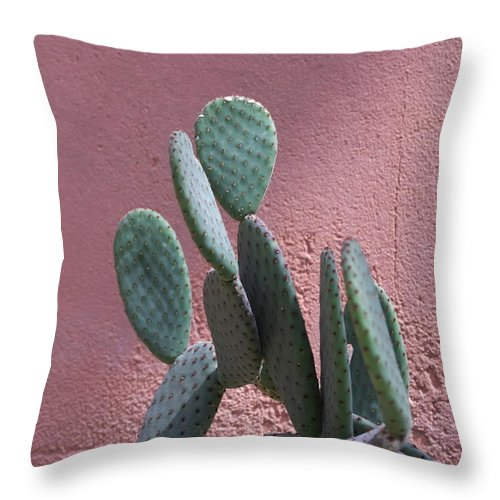 Opuntia Throw Pillow featuring the photograph Opuntia Microdasys by Inter Mari