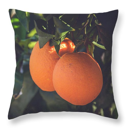 Nature Throw Pillow featuring the photograph Orange #1 by Ignacio Leal Orozco