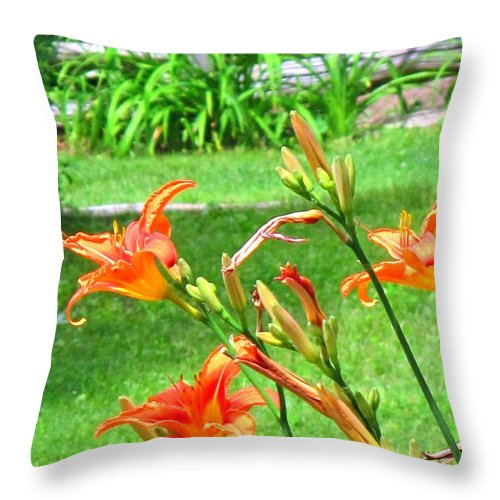 Lilly Throw Pillow featuring the photograph Orange And Green by Ian MacDonald