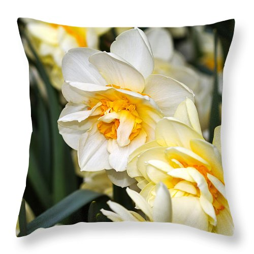 Flower Throw Pillow featuring the photograph Orange And Yellow Double Daffodil by Louise Heusinkveld