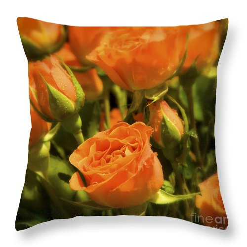 Rose Throw Pillow featuring the photograph Orange Beauties by Idaho Scenic Images Linda Lantzy