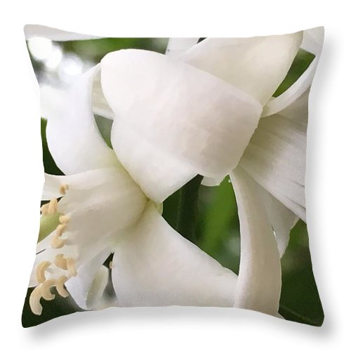 Flowers Throw Pillow featuring the photograph Orange Blossoms #4 by Denise DuFresne