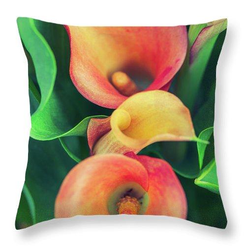 Natalia Macheda Throw Pillow featuring the photograph Orange Calla Lily by Natalia Macheda