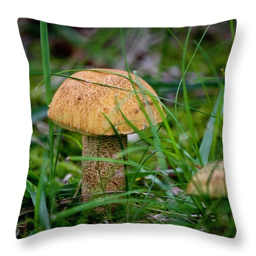 Fungus Throw Pillow featuring the photograph Orange Cap by Teresa Mucha