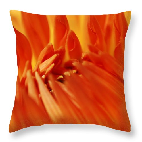 Macro Throw Pillow featuring the photograph Orange by Catherine Lau