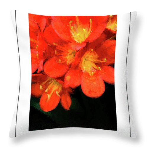 Clivia Throw Pillow featuring the photograph Orange Clivia Poster by Mike Nellums