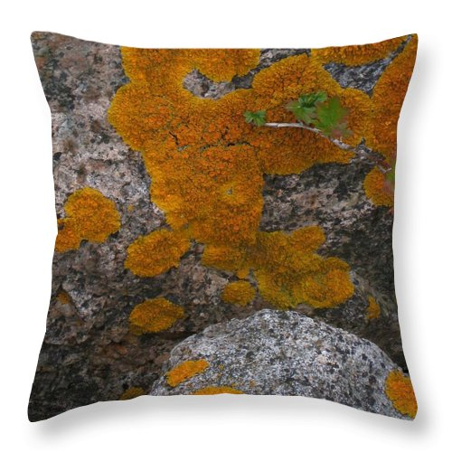 Orange Lichen Throw Pillow featuring the photograph Orange Lichen On Granite by Mary Bedy