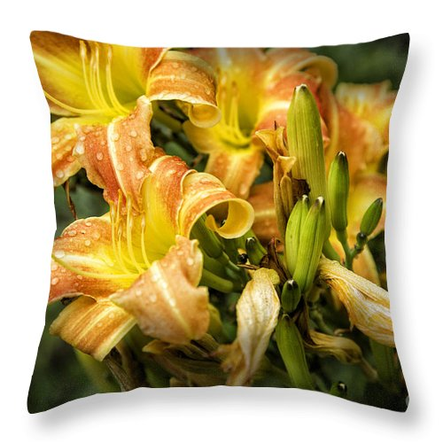 Lily Throw Pillow featuring the photograph Orange Lilies by Timothy Hacker