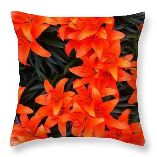 Orange Lilies Vignette Throw Pillow featuring the photograph Orange Lilies Vignette by Barbara Griffin