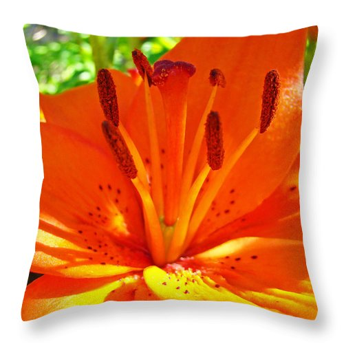 Lilies Throw Pillow featuring the photograph Orange Lily Flower Art Print Summer Lily Garden Baslee Troutman by Baslee Troutman