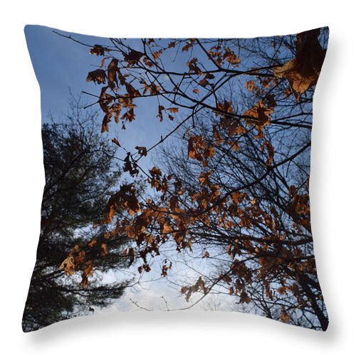 Leaves Throw Pillow featuring the photograph Orange Love by Caren DeCesaris