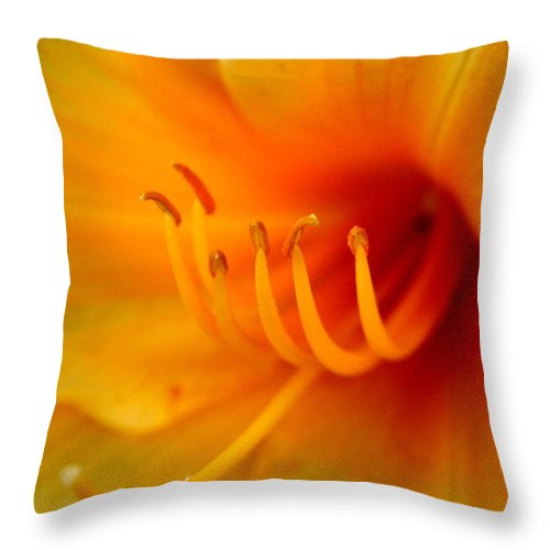 Lily Throw Pillow featuring the photograph Orange Marmalade 2 by David Dunham