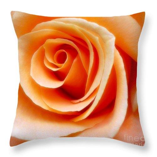 Orange Rose Throw Pillow featuring the photograph Orange Rose by Addie Hocynec