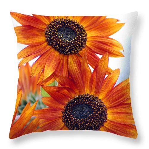 Sunflower Throw Pillow featuring the photograph Orange Sunflower 2 by Amy Fose