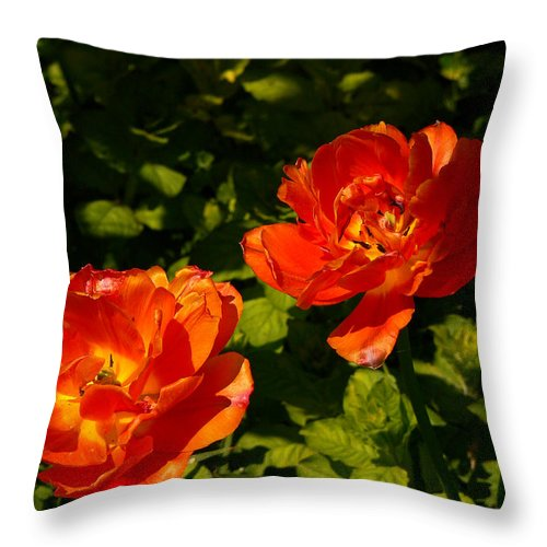 'orange Tulips' Throw Pillow featuring the photograph Orange Tulips In My Garden by Helmut Rottler