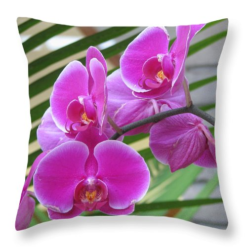 Orchid Throw Pillow featuring the photograph Orchid 1 by David Dunham