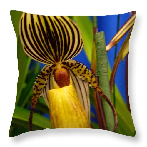 Orchids Throw Pillow featuring the photograph Orchid 10 by Peggy King