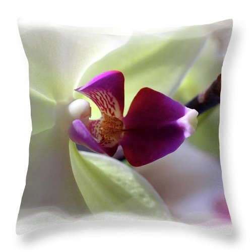 Orchid Throw Pillow featuring the photograph Orchid 2 by David Bearden