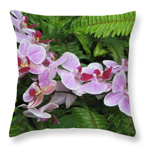 Orchid Throw Pillow featuring the photograph Orchid 2 by David Dunham