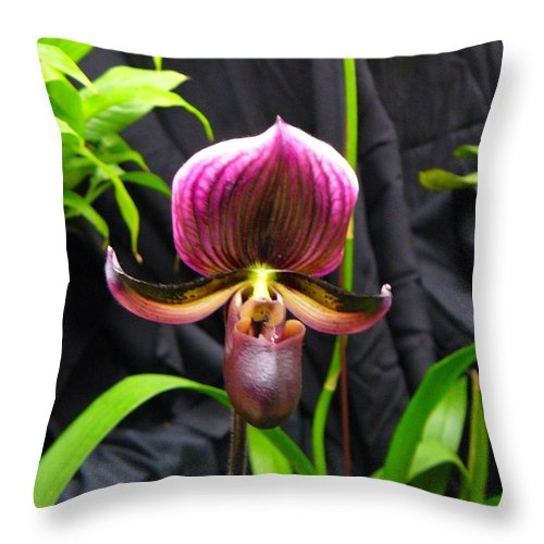 Orchid Throw Pillow featuring the photograph Orchid 2 by Peggy King