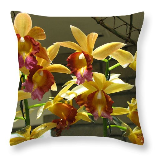 Orchid Throw Pillow featuring the photograph Orchid 5 by David Dunham