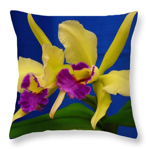 Orchids Throw Pillow featuring the photograph Orchid 7 by Peggy King