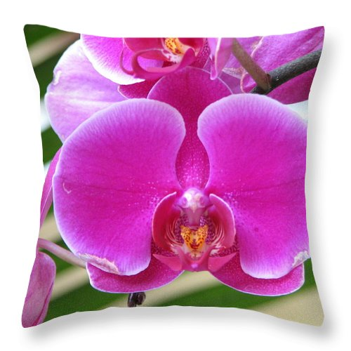 Orchid Throw Pillow featuring the photograph Orchid 8 by David Dunham