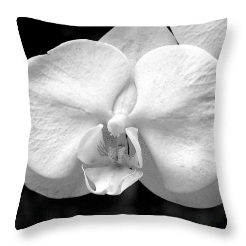 Plant Throw Pillow featuring the photograph Orchid by David Dunham