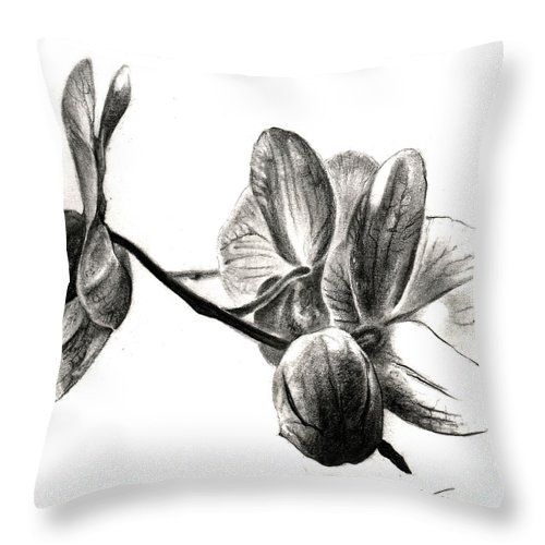 Lin Petershagen Throw Pillow featuring the drawing Orchids In Black by Lin Petershagen