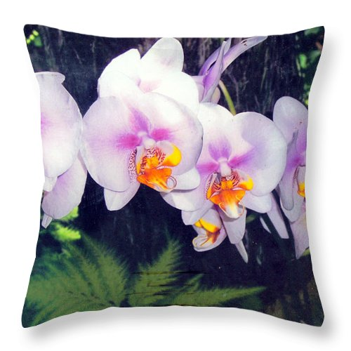 Orchids Throw Pillow featuring the photograph Orchids Of Hawaii by Dina Holland