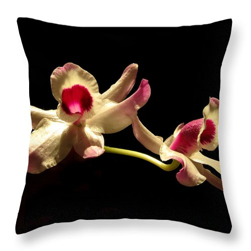 Nature Throw Pillow featuring the photograph Orchids Only by Peg Urban