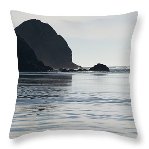 Bicycle Throw Pillow featuring the photograph Oregon Commuter by Bob Christopher
