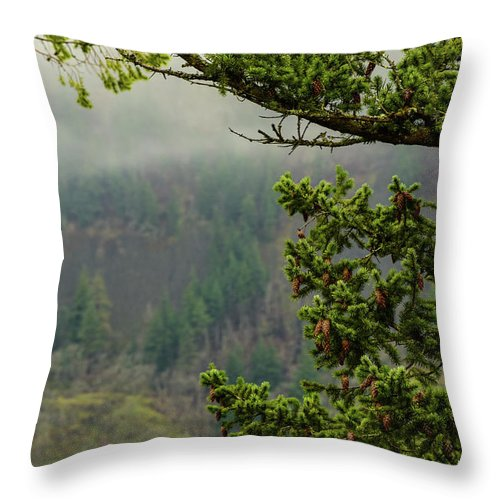 Oregon Fir Washington Forest Throw Pillow featuring the photograph Oregon Fir Washington Forest by Tom Cochran